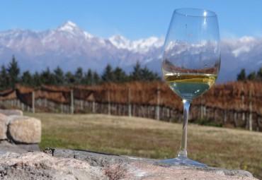 chile vinho branco