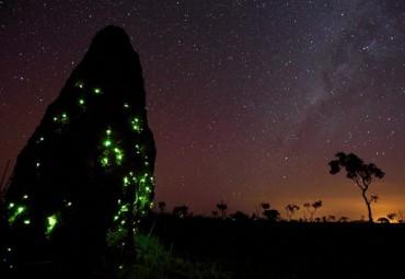 descanso em goias parque nacional das emas
